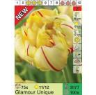 Тюльпаны Glamour Unique (x100) 11/12 (цена за шт.)