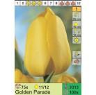 Тюльпаны Golden Parade (x100) 11/12 (цена за шт.)
