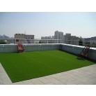 Семена газонной травы, Травосмесь- Экстенсивное озеленение крыши GF 610, 60 гр.
