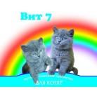 ВИТ 7 для котят