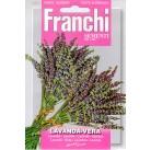 Лаванда Vera (1 гр) DBA 87/1   Franchi Sementi