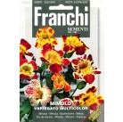 Мимолюс Variegato, смесь (1 гр)  DBFS 338/1   Franchi Sementi