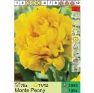 Тюльпаны Monte Peony (x100) 11/12 (цена за шт.)