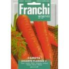 Морковь Flakkee 2 (8 гр) VXO 23/13   Franchi Sementi