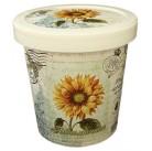 Подсолнечник набор для выращивания ROSTOK VISA  (пласт. горшочек, обогощенный грунт, пакет с семенами)