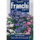 Незабудка, смесь (0,5 гр) DBF 339/1   Franchi Sementi