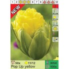Тюльпаны Pop Up yellow (x100) 11/12 (цена за шт.)