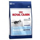 Сухой корм Royal Canin Maxi Junior Active 20kg
