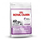 Сухой корм Royal Canin Giant Starter 4 kg