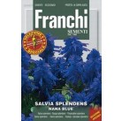 Сальвия блестящая карликовая, синяя  DBFS 348/4   Franchi Sementi