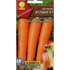 Морковь Атлант F1. Аэлита