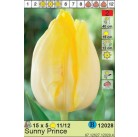 Тюльпаны  Sunny Prince (x5) 11/12 (цена за шт.)