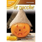 Тыква Halloween GLZU 145/16   Franchi Sementi