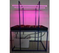 Гидропонный учебный стол