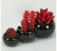 Искусственный цветок Суккуленты, 3 цветка, в черном горшке (92116)