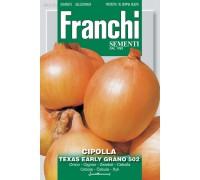 Лук репчатый Texas Early 100гр  43/2   Franchi Sementi