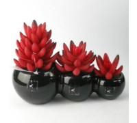 Искусственный цветок Суккуленты, 3 цветка, в черном горшке (91396)
