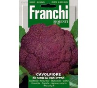 Капуста цветная Sicilia Violletto 100гр  A 30/29   Franchi Sementi
