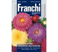 Астра принцеса смесь (2гр) DBF 304/10   Franchi Sementi