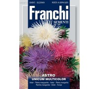 Астра игольчатая смесь (2 гр) DBF 304/11   Franchi Sementi