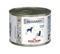 Влажный корм Royal Canin RECOVERY 195 g