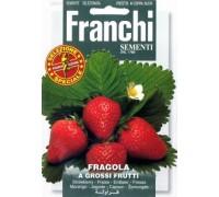 Клубника Quattro Stagioni (0,2 гр) 63/1 Franchi Sementi